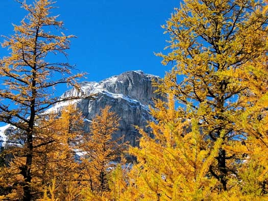 Larch Mountain